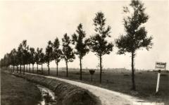 Quarles-van-Uffordweg