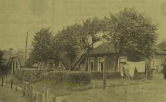 1961_1