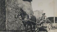 Jan Stoel met paard en mestkar.